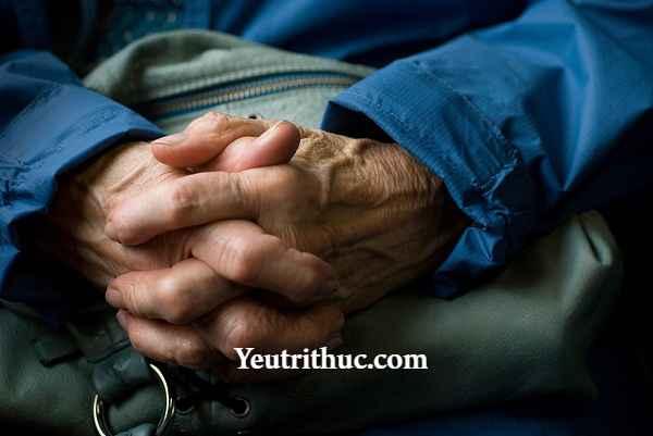 Parkinson là bệnh gì – tìm hiểu thông tin về bệnh Parkinson 2