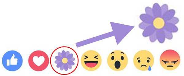 """Ý nghĩa nút """"Thả hoa"""" Facebook nhân lễ kỷ niệm """"Ngày của mẹ"""" 1"""