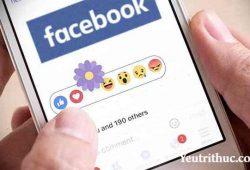 """Ý nghĩa nút """"Thả hoa"""" Facebook nhân lễ kỷ niệm """"Ngày của mẹ"""" 2"""