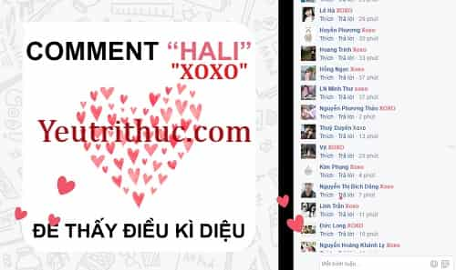 Trào lưu comment XoXo Hali trên Facebook thả tim nghĩa là gì