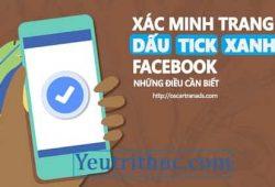 Nút Tích xanh Facebook là gì, cách xác nhận làm dấu tích xanh Facebook 2