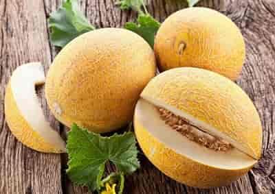 Cantaloupe là quả gì, tìm hiểu về dưa vàng và tác dụng của nó 1
