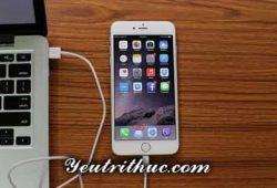 Apple iTunes là gì, các tính năng cơ bản của iTunes Apple 1