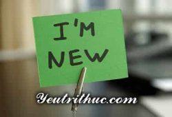 Newbie là gì, ý nghĩa đầy đủ và cách phát âm của từ Newbie 1