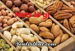 Nuts là gì, ý nghĩa từ Nuts đầy đủ nhất trong tất cả các lĩnh vực