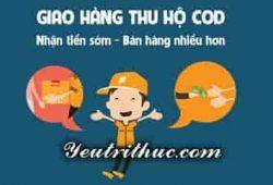 Ship COD là gì, cách hoạt động dịch vụ giao hàng thu tiền hộ Ship COD