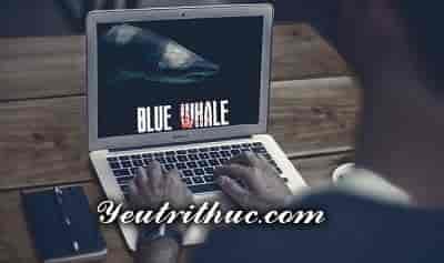 Trò chơi Thách thức Cá Voi Xanh là gì, trào lưu Blue Whale Challenge