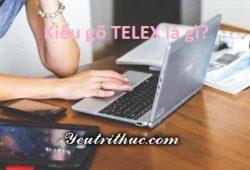 Cách gõ TELEX