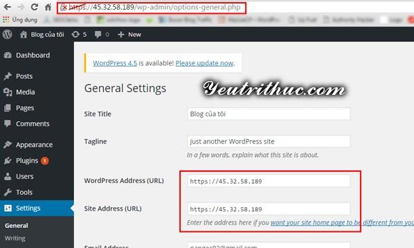Tiến hành cài đặt WordPress 5