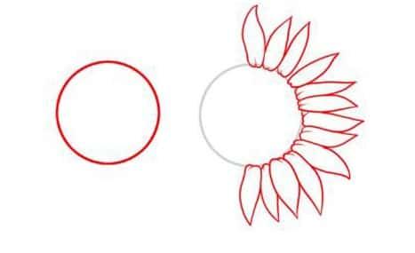 Cách vẽ Hoa Hướng Dương tỏa nắng 1