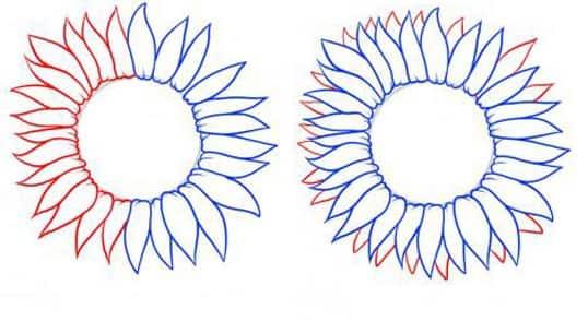 Cách vẽ Hoa Hướng Dương tỏa nắng 2