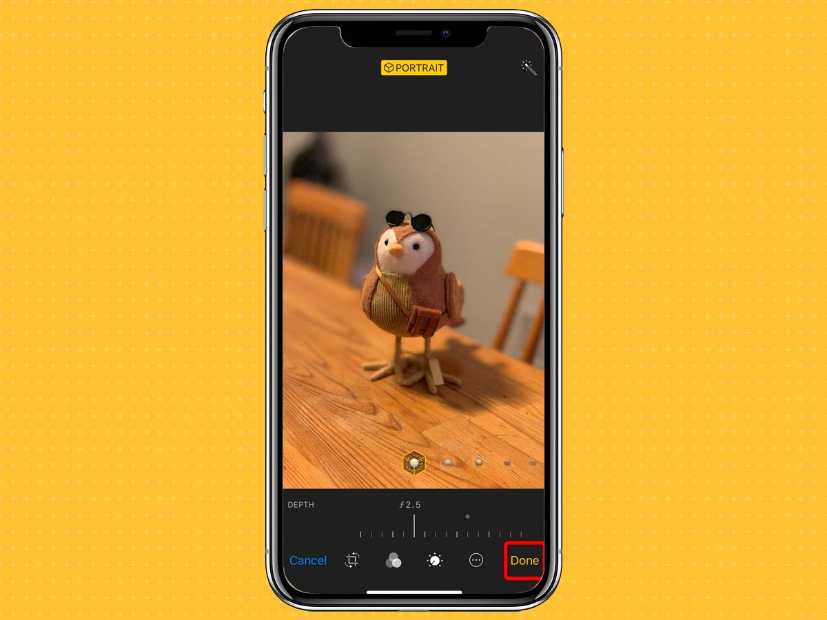 Cách sử dụng Depth Control trên camera iPhone XS, XS Max, XR 5