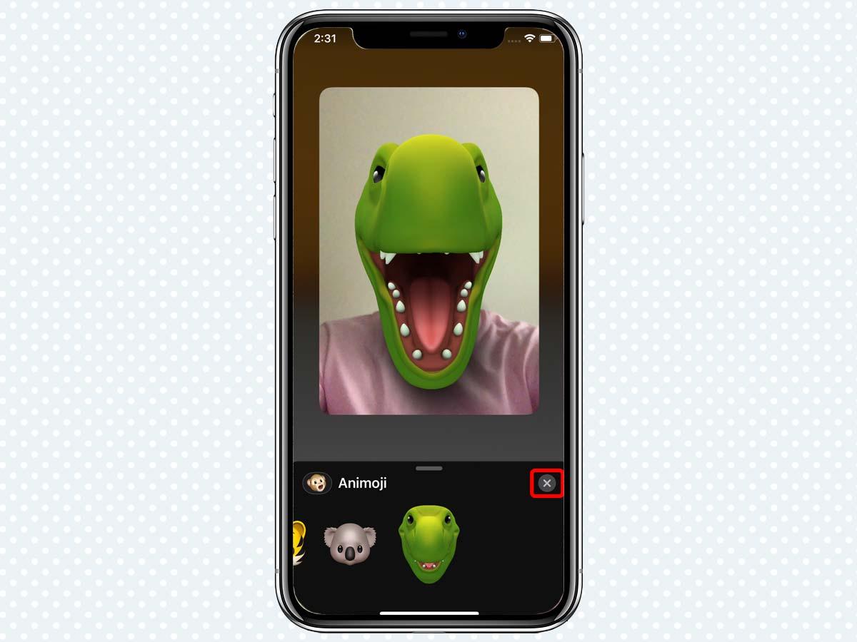 Cách sử dụng Animoji và Memoji khi gọi điện FaceTime trên iMessage 5