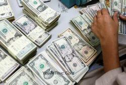 Tỷ giá USD đô la Mỹ, 100 đô la Mỹ và 1 USD bằng bao nhiêu tiền Việt