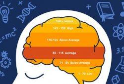 IQ là gì, khái niệm chỉ số thông minh và thang điểm chỉ số IQ