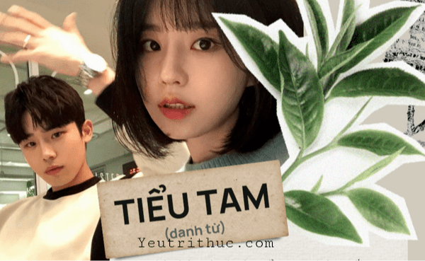 Tại sao gọi Tiểu Tam là trà xanh